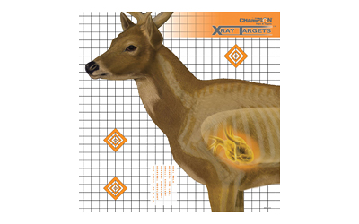CHAMPION DEER X-RAY TARGET 6/PK - for sale